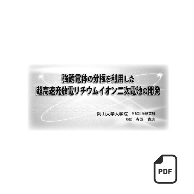 fj10012100